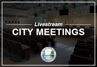 City Commission Meetings