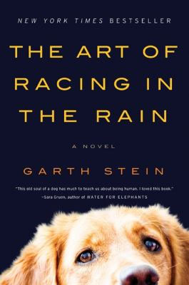 art of racing in the rain.jpg